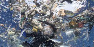 Rolex và nỗ lực bảo tồn đại dương qua từng câu chuyện kể